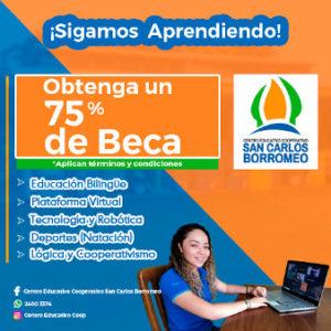 Oferta de matrícula en San Carlos Borromeo