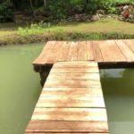 Lago agua verde y muelle de madera
